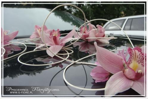 dekoracja samochodu - Storczyk